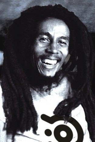 Bob Marley Success